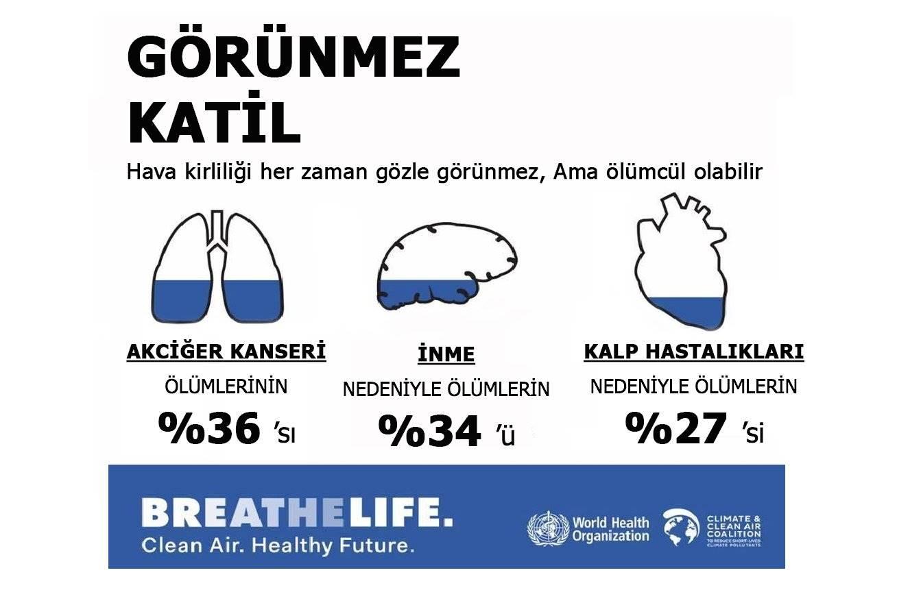 Hava Kalitesi Ve Hava Kirliliğinin Insan Sağlığı üzerine Etkileri