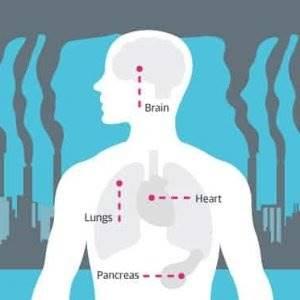 Hava Kirliliği, Sağlığımızı Nasıl Etkiliyor?