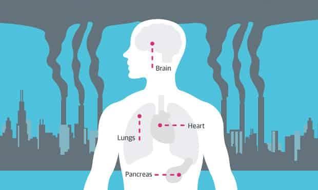 Hava Kirliliği Ve Sağlık. Hava Kirliliğine Maruz Kalmanın Sağlığa Etkileri.