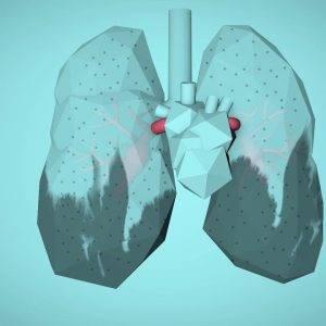 Hava Kirliliği Vücudumuzu Ve Sağlığımızı Nasıl Olumsuz Etkiliyor?