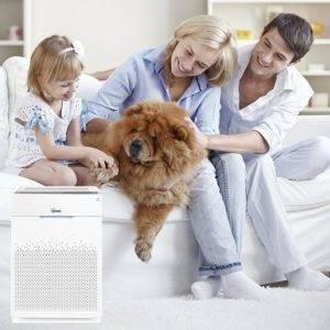 Hayvan Alerjisi Olanların Dostu, Winix Hava Temizleme Cihazları