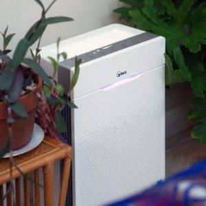 Hava Kalitesini, Bitkilerle Ve Winix Hava Temizleme Cihazı Ile Iyileştirin